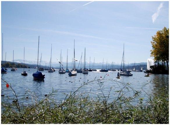 Zürichsee mit Alpenblick