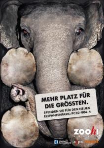 Elefantenhaus1